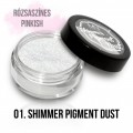 Mystic Nails Shimmer Pigment Dust 01